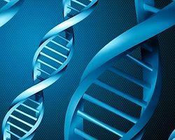8 Bin Türk DNA'sı Rumlarda