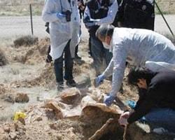 Konya'da Fidan Dikerken İnsan Kemikleri Buldular