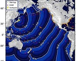 Japonya'da 4.9 Büyüklüğünde Deprem