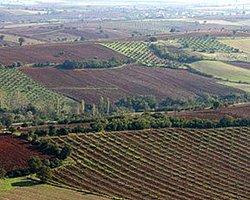 2B Tarım Arazileri İçin 100 Milyon TL Kredi