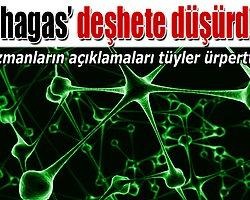 Abd'nin Yeni Aıds'i: Chagas