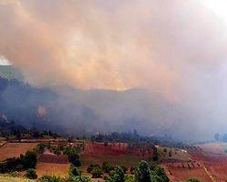 Türkiye-Suriye Sınırında Yangın Alarmı