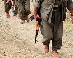 Teslim Olan 15 PKK'lı Serbest Kaldı