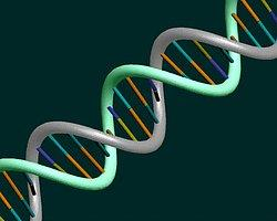 DNA Testinde Büyük Devrim