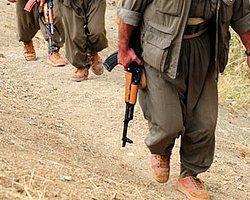 PKK Her Aileden Bir Kişi İstedi