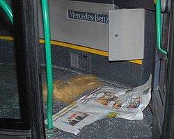 Metrobüs Yolunda Kaza: 1 Ölü