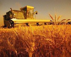 Tarımsal İhracat Yüzde 9 Arttı