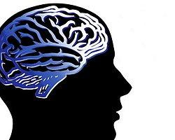 Beyin Kanalizasyon Gibi