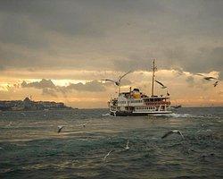 Marmara'da Arsenik Alarmı