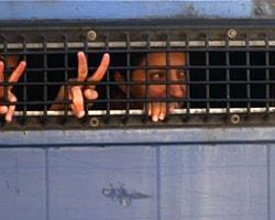 KCK Davasında Ceza Yağdı
