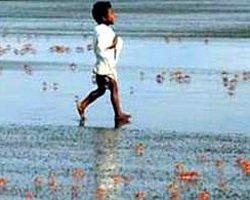 Çocuk Aksayarak Yürüyorsa Dikkat