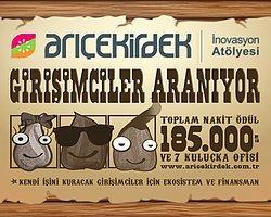 Arı Çekirdek'den Girişimcilere 185 Bin Tl'lik Fırsat!