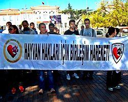 """Ölüm Yasası"" Ankara'da Protesto Edildi"