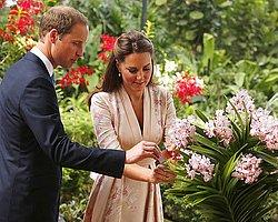'Kraliyet Bebeği'nin Her Şeyi Hazır Ama Evi Yok