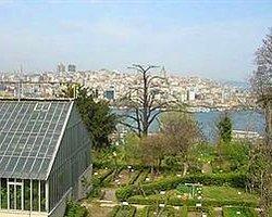 Botanik Bahçesi Müftülüğe Devrediliyor