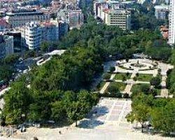 Türkiye'ye Ne Kadar Ağaç Dikildi Polemiği