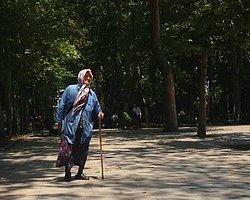 Abdullah Cömert'in Fidanı Hâlâ Gezi'de