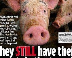 Daily Mirror'dan Skandal Manşet! Milletvekili Olmak İstiyorum!