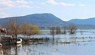 Beyşehir Gölü, İsrail Sazanından Temizleniyor
