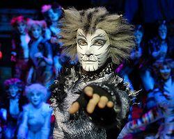 'Cats' Müzikali İstanbul'a Geliyor