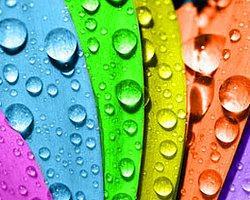 Duvar Rengi Psikolojiyi Etkiliyor!