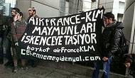 Air France - KLM Ofisini Maymunlar Bastı!