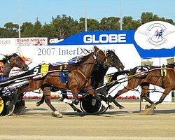 At Yarışında Dehşet Verici Kaza
