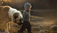 Çocuk Fotoğrafı Nasıl Çekilir 101: Rus Anneden Masal Gibi 23 Kare