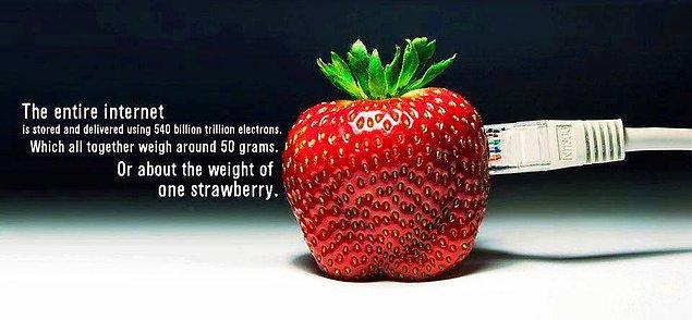 Tüm Internet 540 Milyar Trilyon (10 Üzeri 21) Elektron ile birbirine bağlı. Toplam ağırlıkları yaklaşık 1 çilek kadar..