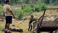 İşçi Maymun