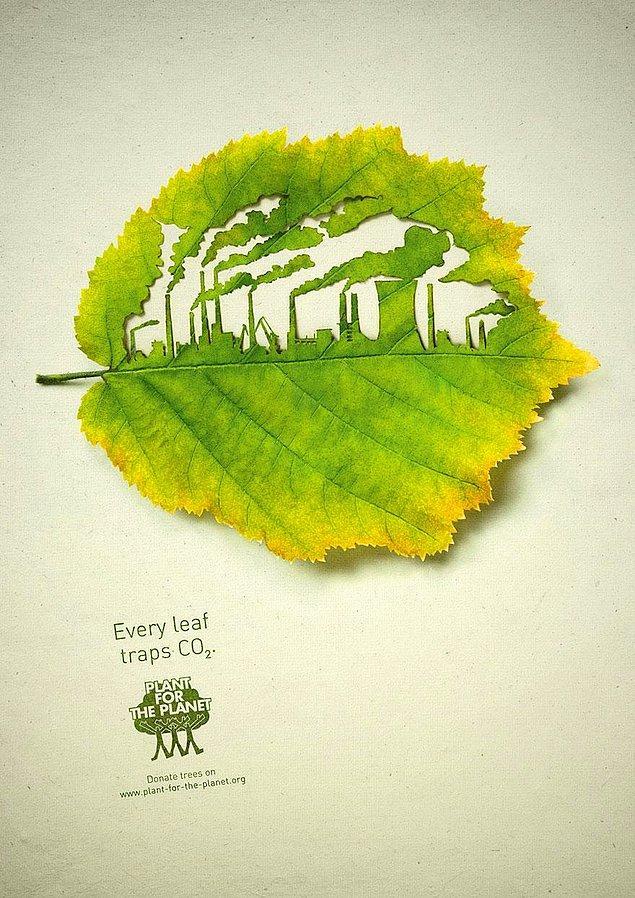 25. Her yaprak oksijen üretir: Gezegen için ağaç dik!