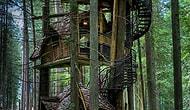 En Güzel Ağaç Evler