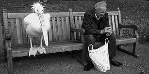 Sadece Büyüklerden Öğrenebileceğiniz 17 Hayat Dersi