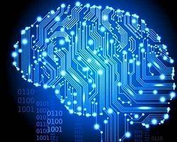 Beynin Başka Bir Vücudu Kontrol Edebileceği Kanıtlandı