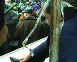 Protestocular Valiyi Dövüp Meydandaki Direğe Böyle Kelepçelediler