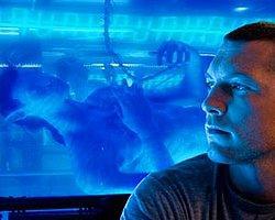 'Avatar'ın Başrolü Gözaltında