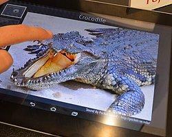 """Fijutsu'dan """"Hissedilebilen Ekranlı"""" Tablet!"""
