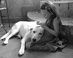 Köpeğinizin Aşkının Size Bir Ömür Boyu Yeteceğinin 16 Nedeni