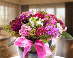 Çiçek Ne Zaman Gönderilir?