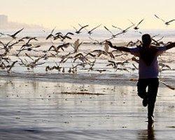 Sizin Fotoğraflarınız: Özgürlük