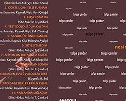 Tolga Çandar'dan Yeni Albüm: Nesini Söyliyem