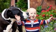 Bebeklerin, Evcil Hayvanlarla 25 Fotoğrafta Dostluğu