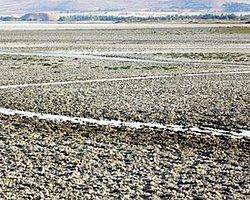 Seyfe Gölü İçin Tehlike Çanları Çalıyor