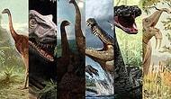 Bir Zamanlar Dünyada Cirit Atan 15 Güzelim Hayvan