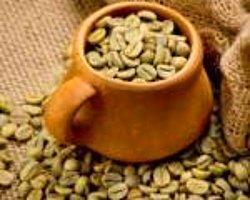 Yeşil Kahve Zayıflamaya Yardımcı Oluyor
