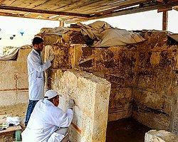 Mısır'da Dünyayı Heyecanlandıran Keşif