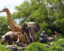 Hayvanat Bahçesi Müdürü TÜBİTAK'a Atandı!