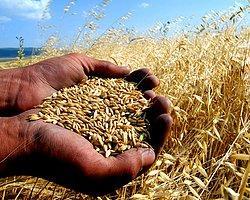 1 Milyona Yakın Çiftçinin Borcu Ertelendi