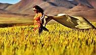 İranlı Kadınlar Başörtüsünü Çıkardı