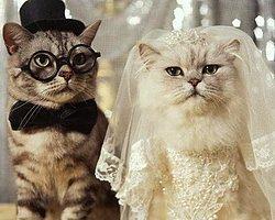 Düğünlerin Olmazsa Olmaz 25 İnsan Tipi